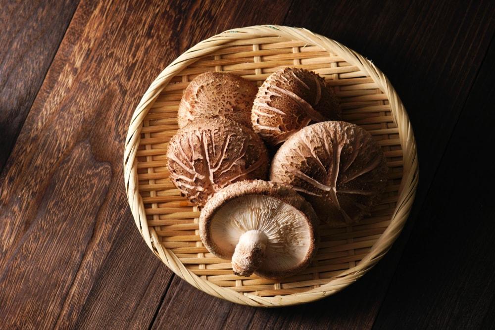 bienfaits du shiitake