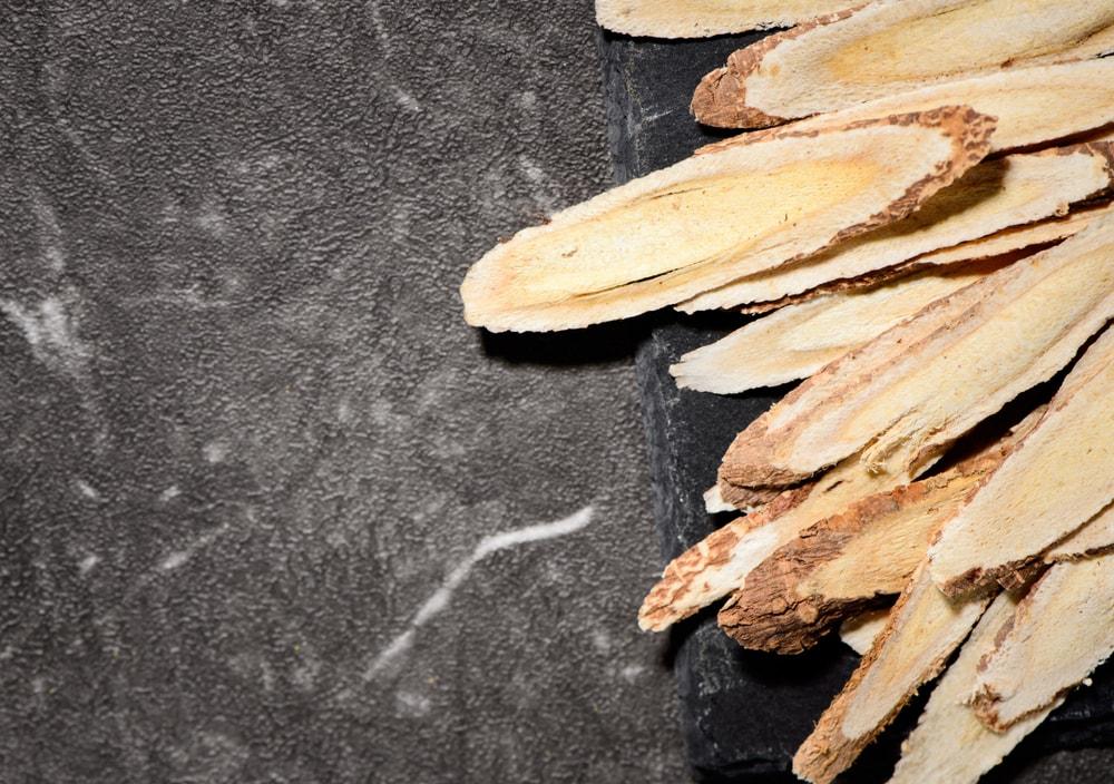 Plante Astragale : Soldes - Crème - Bénéfice | Pourquoi faire une cure ?
