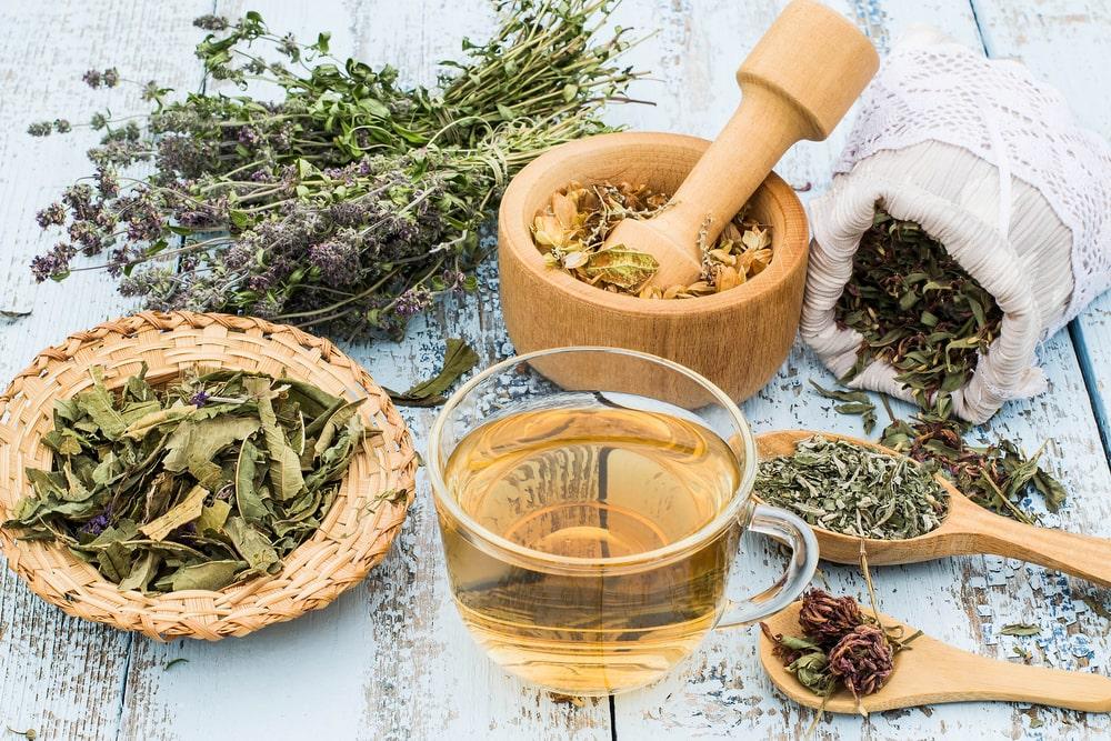 Compléments alimentaires et phytothérapie